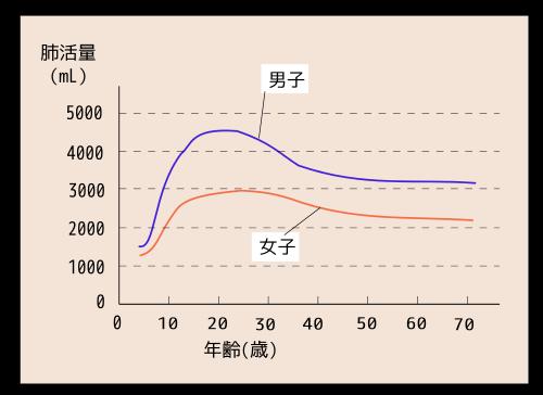 日本人の肺活量の年齢による変化svg.svg[1]
