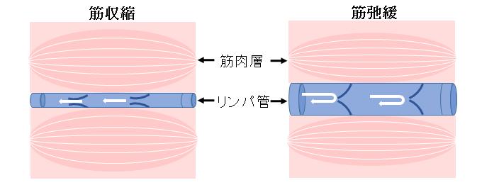 biyousin3_2[1]